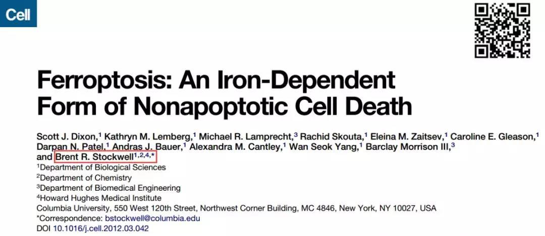 《一种全新的细胞死亡形式——铁死亡》