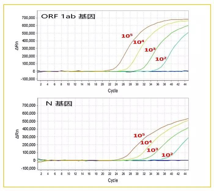 《新品发布:ABScriptⅡ One Step RT-qPCR Probe Kit》