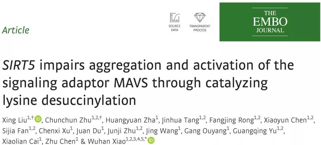 《天然免疫系列推文(一):RIG-I-MAVS信号通路及研究解决方案》