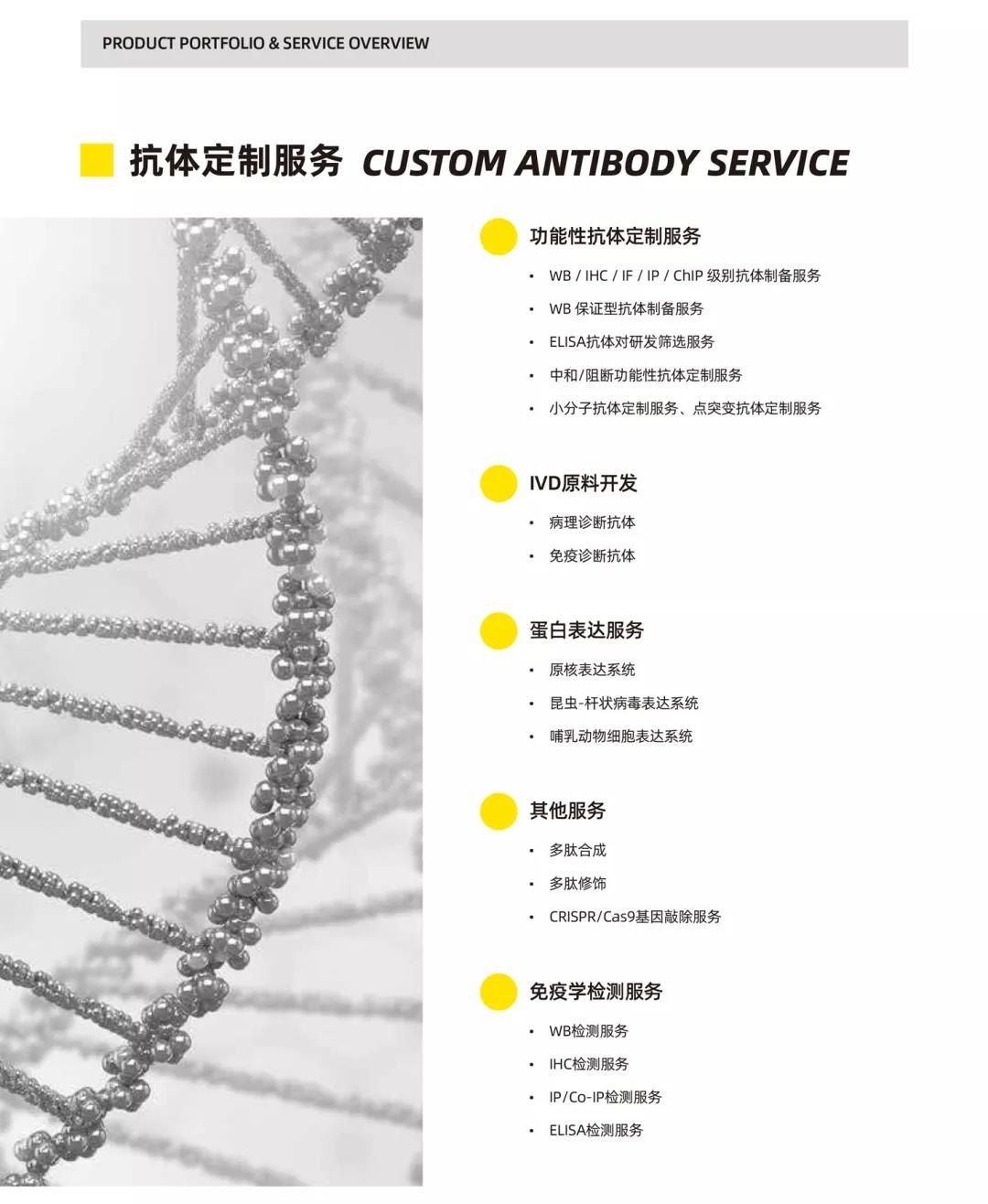 《活动 | 秋季开学嘉年华--抗体定制服务篇》